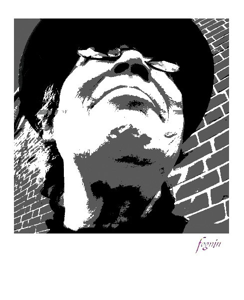 010699_2008-06-13_fognin_grafix