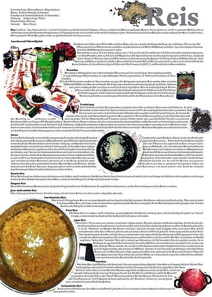2006_fognin_thg_plkt_reis50x70_s1_1680_1680
